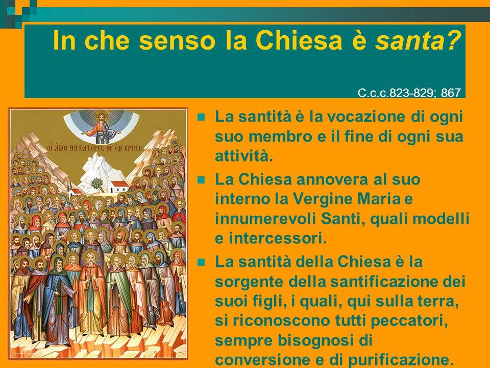In che senso la Chiesa è santa? C.c.c.823-829; 867 La santità è la vocazione di ogni suo membro e il fine di ogni sua attività. La Chiesa annovera al