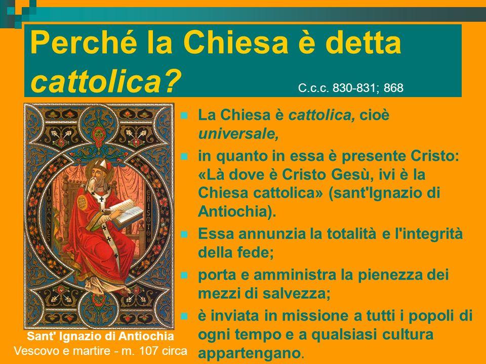 Perché la Chiesa è detta cattolica? C.c.c. 830-831; 868 La Chiesa è cattolica, cioè universale, in quanto in essa è presente Cristo: «Là dove è Cristo