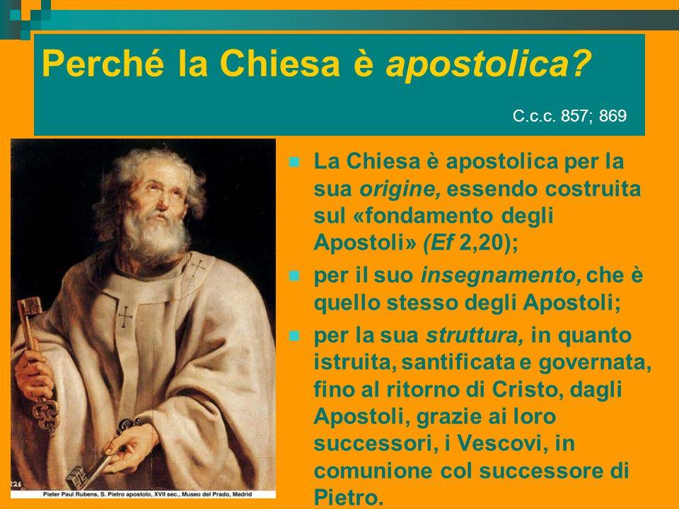 Perché la Chiesa è apostolica? C.c.c. 857; 869 La Chiesa è apostolica per la sua origine, essendo costruita sul «fondamento degli Apostoli» (Ef 2,20);