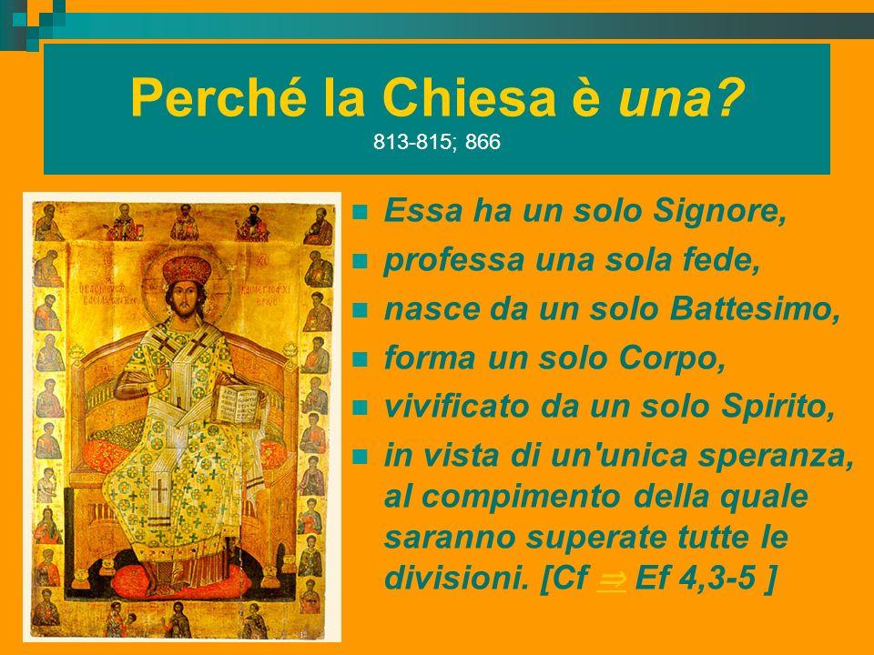 Perché la Chiesa è una? 813-815; 866 Essa ha un solo Signore, professa una sola fede, nasce da un solo Battesimo, forma un solo Corpo, vivificato da u