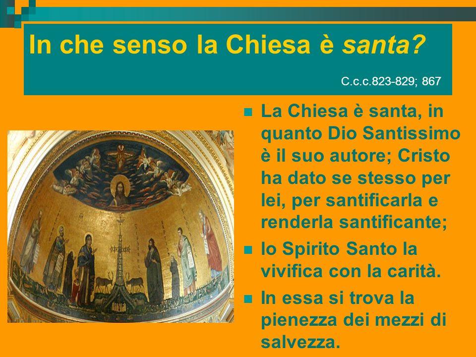 In che senso la Chiesa è santa? C.c.c.823-829; 867 La Chiesa è santa, in quanto Dio Santissimo è il suo autore; Cristo ha dato se stesso per lei, per
