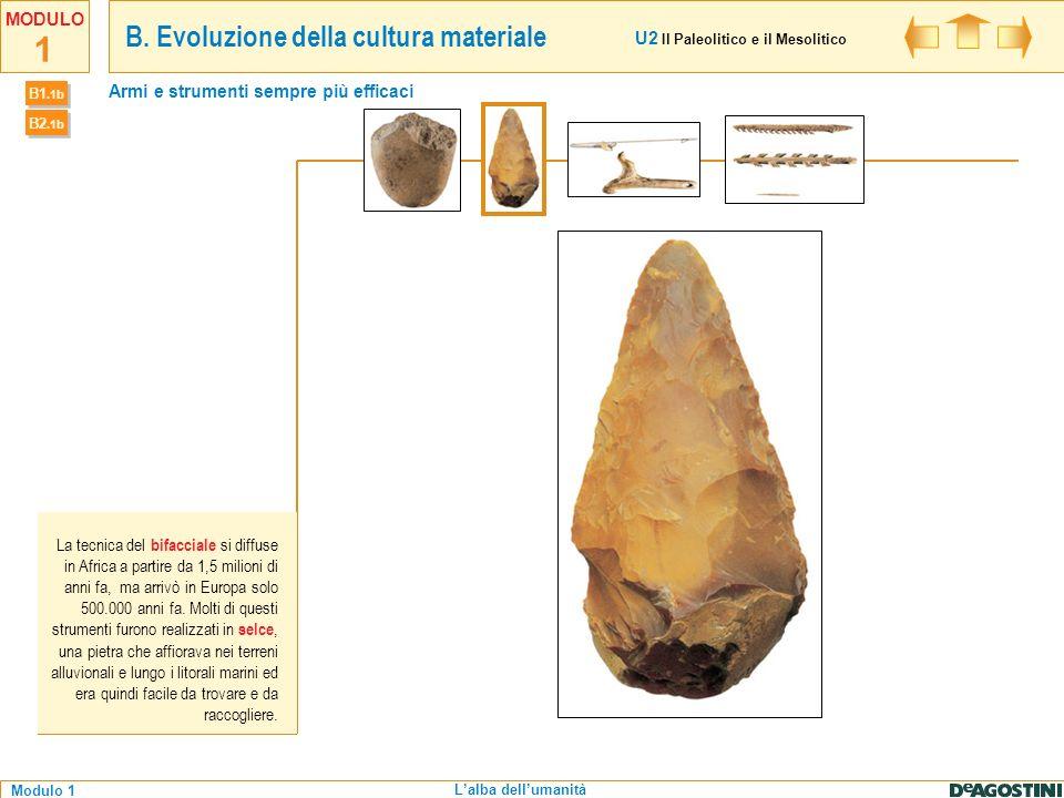 1 Modulo 1 MODULO Lalba dellumanità La tecnica del bifacciale si diffuse in Africa a partire da 1,5 milioni di anni fa, ma arrivò in Europa solo 500.0
