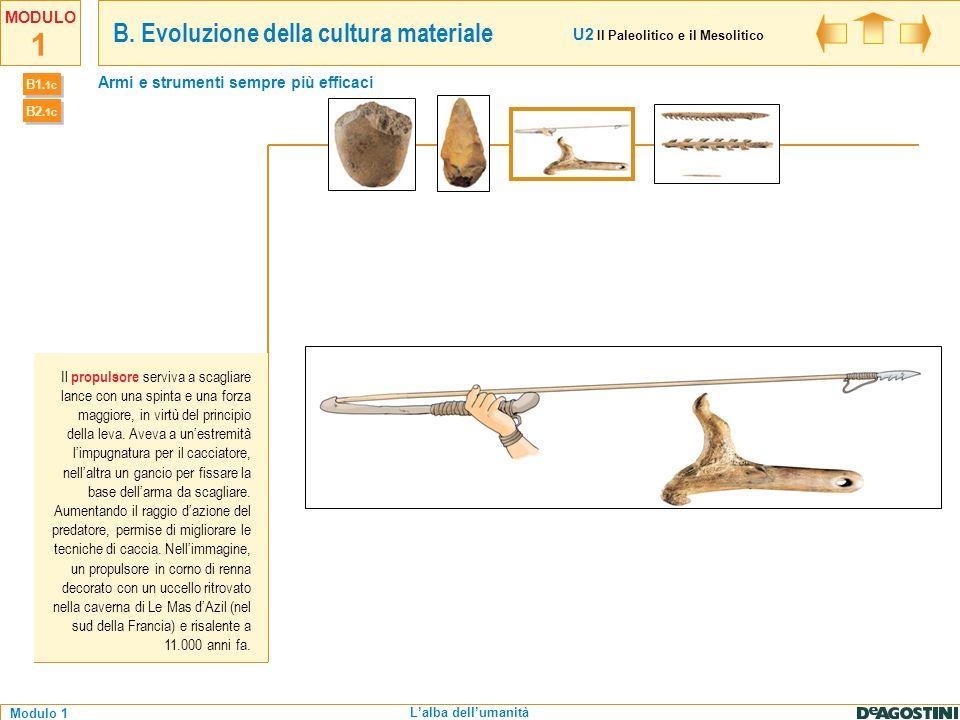 1 Modulo 1 MODULO Lalba dellumanità Lutilizzo di materiali come l osso permise di realizzare strumenti sempre più sofisticati come arpioni per la pesca, bulini per incidere la pietra e aghi per cucire pelli di animali.