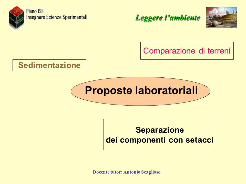 Docente tutor: Antonio Scaglioso Proposte laboratoriali Sedimentazione Comparazione di terreni Separazione dei componenti con setacci Leggere lambient