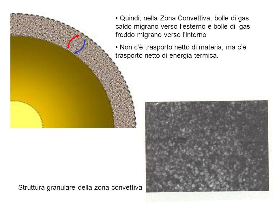 Quindi, nella Zona Convettiva, bolle di gas caldo migrano verso lesterno e bolle di gas freddo migrano verso linterno Non cè trasporto netto di materi