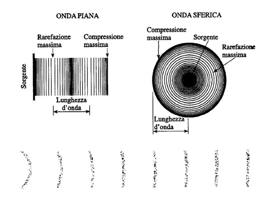 Le particelle che entrano in vibrazione trasmettono la perturbazione (compressione e rarefazione) a quelle vicine oscillando intorno alla loro posizione di equilibrio.