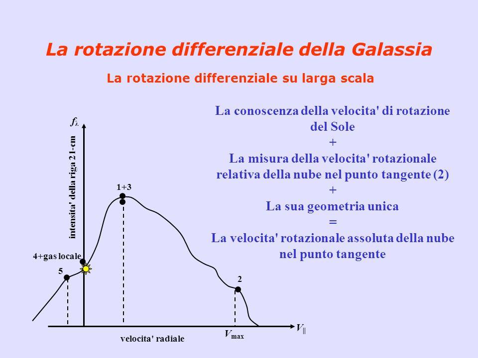 La rotazione differenziale della Galassia La rotazione differenziale su larga scala La conoscenza della velocita' di rotazione del Sole + La misura de