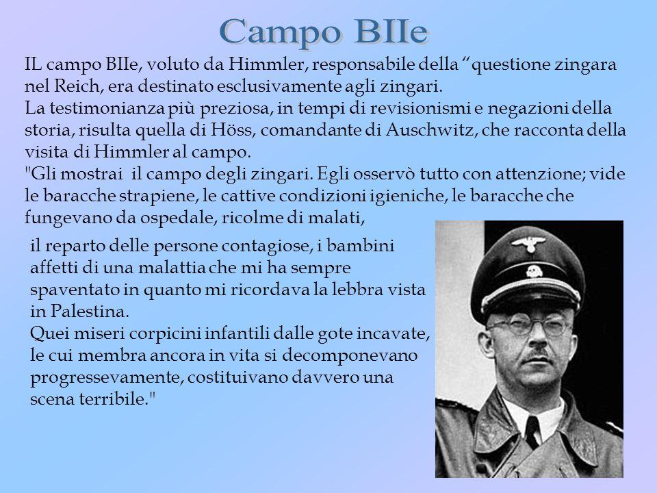 IL campo BIIe, voluto da Himmler, responsabile della questione zingara nel Reich, era destinato esclusivamente agli zingari. La testimonianza più prez