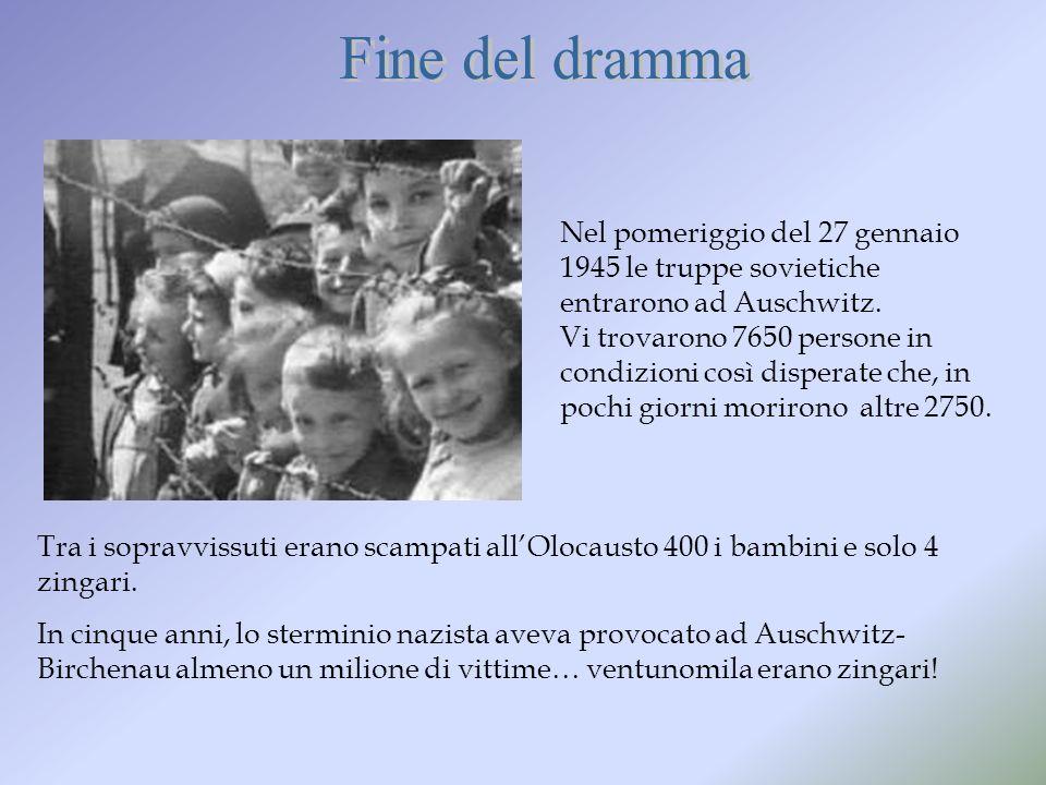 Tra i sopravvissuti erano scampati allOlocausto 400 i bambini e solo 4 zingari. In cinque anni, lo sterminio nazista aveva provocato ad Auschwitz- Bir