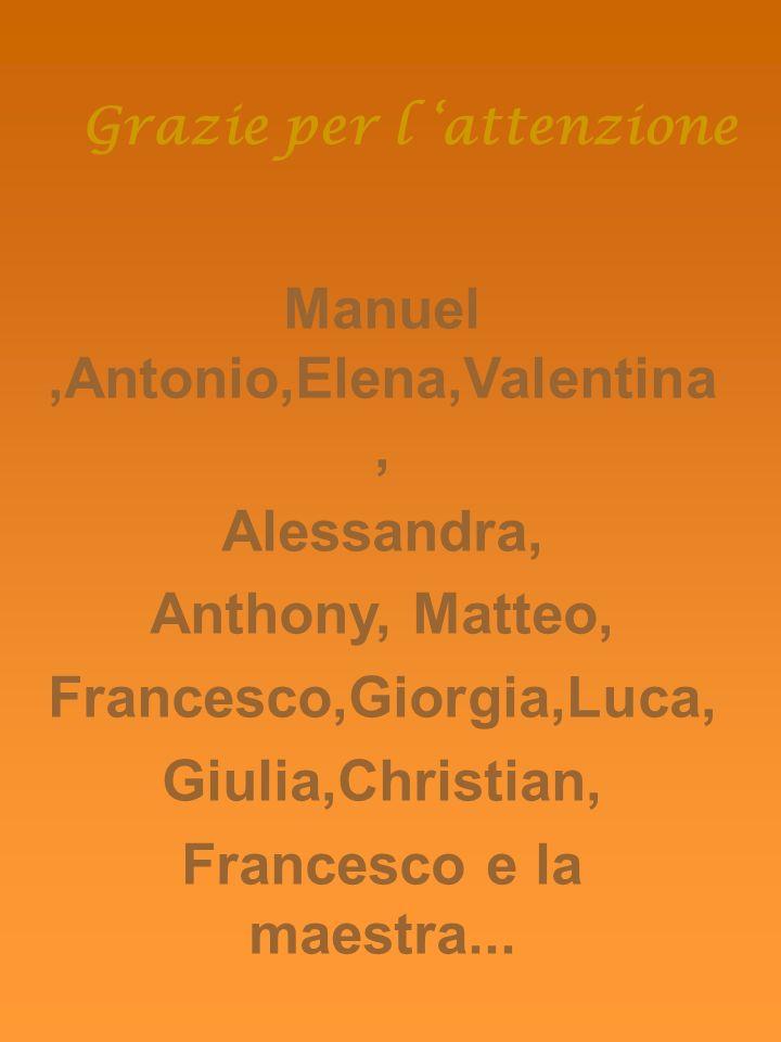 Grazie per l attenzione Manuel,Antonio,Elena,Valentina, Alessandra, Anthony, Matteo, Francesco,Giorgia,Luca, Giulia,Christian, Francesco e la maestra...