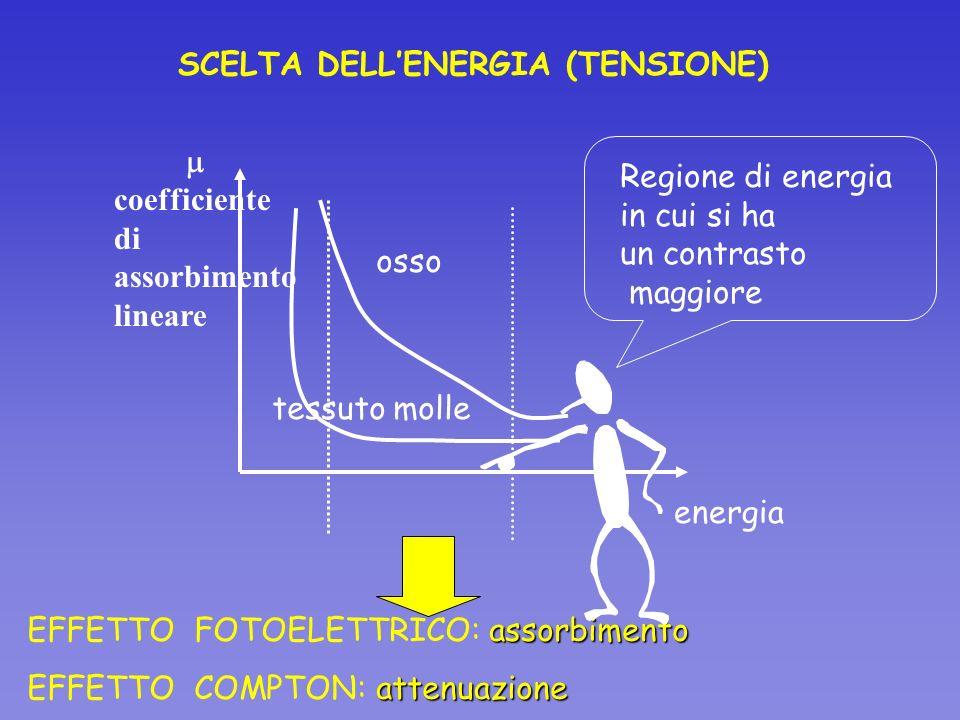 SCELTA DELLENERGIA (TENSIONE) coefficiente di assorbimento lineare energia osso tessuto molle assorbimento EFFETTO FOTOELETTRICO: assorbimento attenua