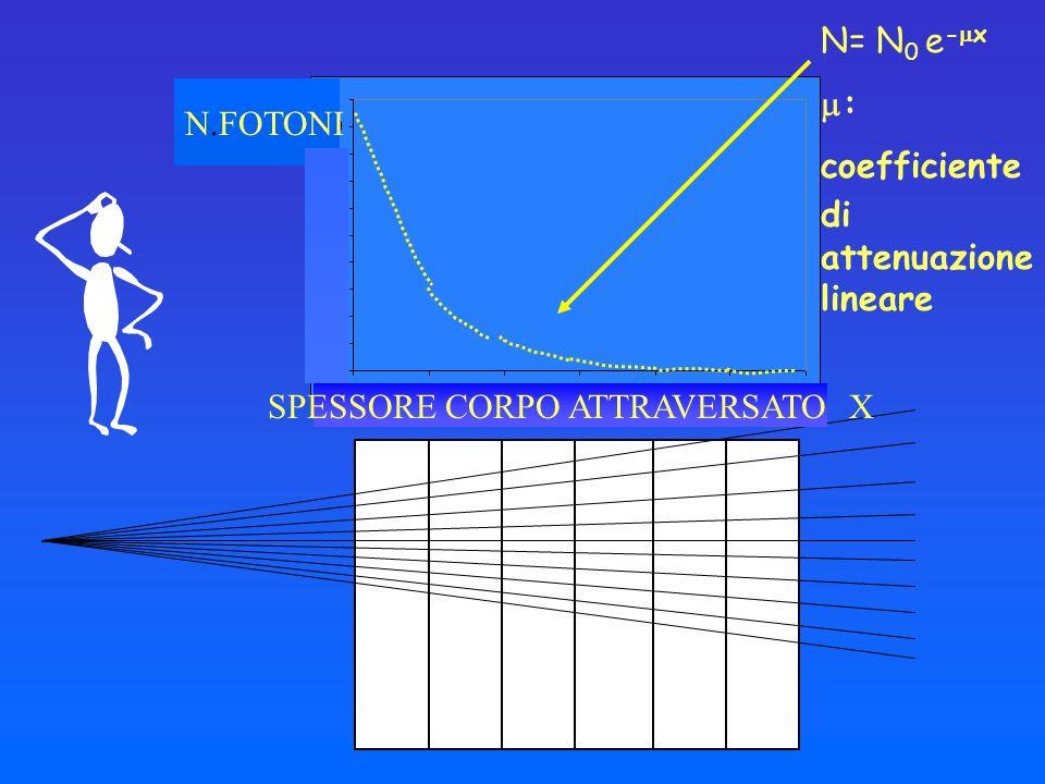 SPESSORE CORPO ATTRAVERSATO X N.FOTONI N= N 0 e - x : coefficiente di attenuazione lineare