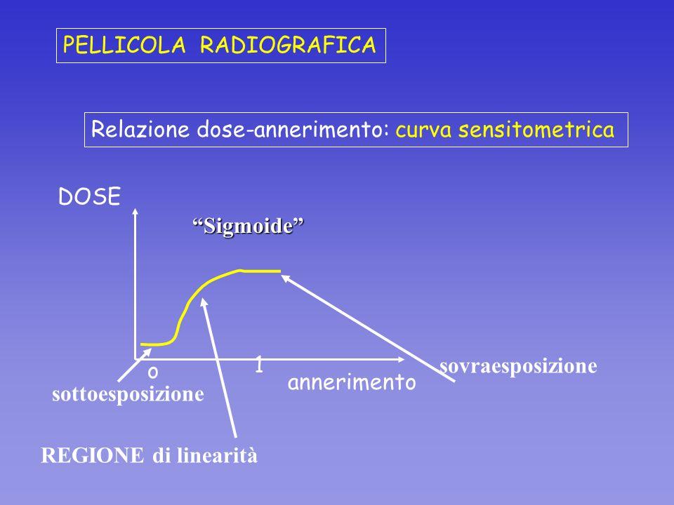 Relazione dose-annerimento: curva sensitometrica annerimento DOSE REGIONE di linearità Sigmoide PELLICOLA RADIOGRAFICA sottoesposizione sovraesposizio