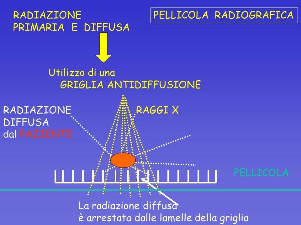 RADIAZIONE PRIMARIA E DIFFUSA Utilizzo di una GRIGLIA ANTIDIFFUSIONE La radiazione diffusa è arrestata dalle lamelle della griglia PELLICOLA RAGGI X R