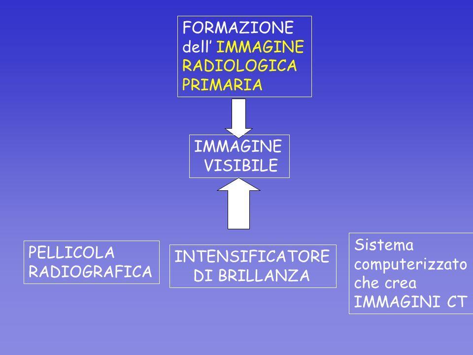 FORMAZIONE dell IMMAGINE RADIOLOGICA PRIMARIA IMMAGINE VISIBILE INTENSIFICATORE DI BRILLANZA PELLICOLA RADIOGRAFICA Sistema computerizzato che crea IM