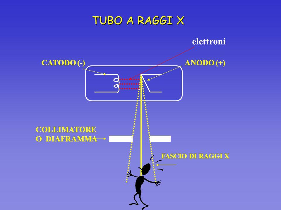 TUBO A RAGGI X CATODO (-) COLLIMATORE O DIAFRAMMA FASCIO DI RAGGI X elettroni ANODO (+)