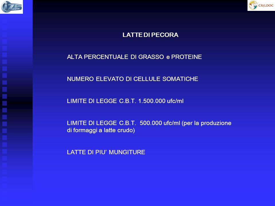 LATTE DI PECORA ALTA PERCENTUALE DI GRASSO e PROTEINE NUMERO ELEVATO DI CELLULE SOMATICHE LIMITE DI LEGGE C.B.T. 1.500.000 ufc/ml LIMITE DI LEGGE C.B.