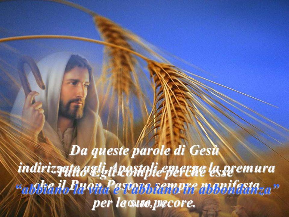 Vocazione Pregate dunque il padrone della messe Pregate dunque il padrone della messe perché mandi operai per la sua messe (Lc 10,2)