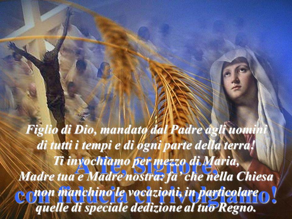 Lo Spirito Santo renda la Chiesa intera un popolo di oranti, che elevano la loro voce al Padre celeste per implorare sante vocazioni per il sacerdozio