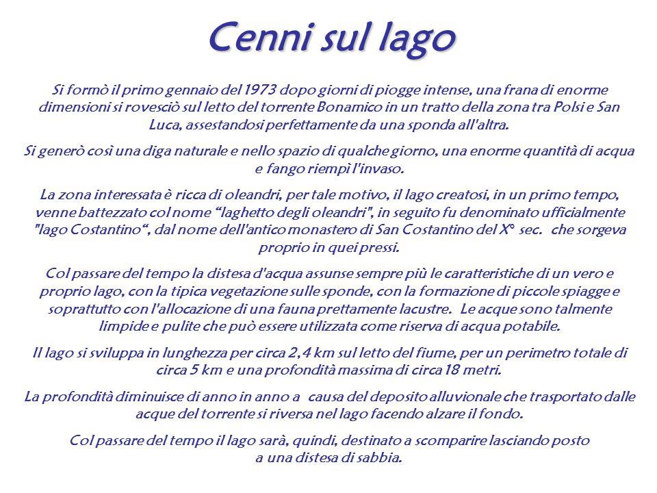 Centro Studi e Ricerche Geo Astro Vulcanologia - Onlus Solo Fax 0965/622772 Cell 347 6564494 Sito Web www.geoastrovulcanologia.eu E-mail info@geoastrovulcanologia.eu