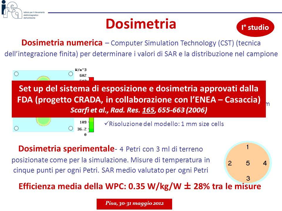 Dosimetria Dosimetria numerica – Computer Simulation Technology (CST) (tecnica dellintegrazione finita) per determinare i valori di SAR e la distribuz