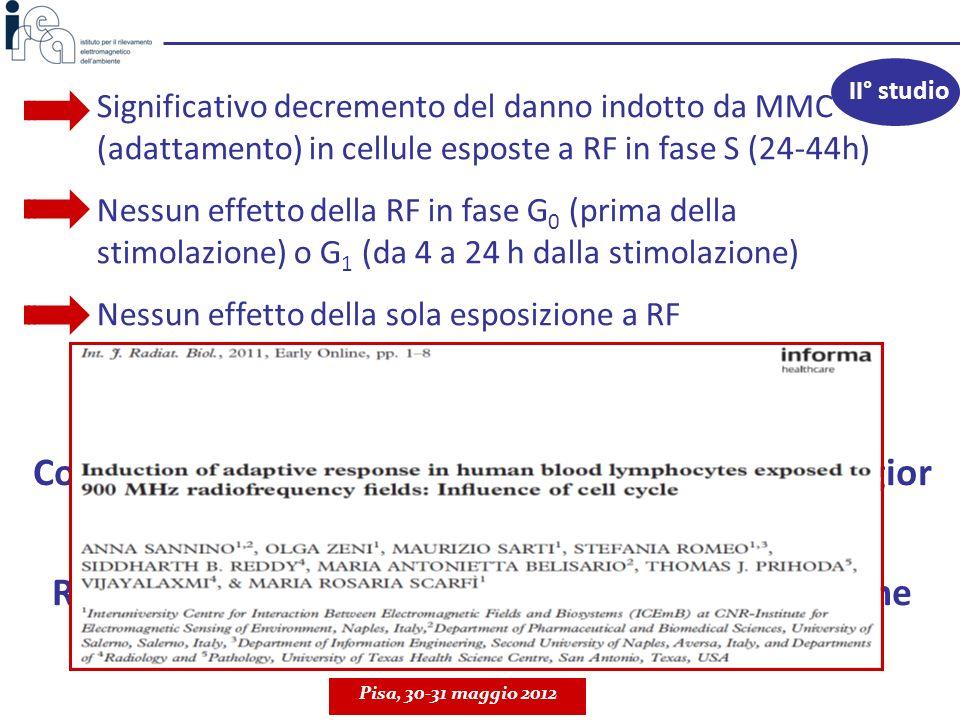 Significativo decremento del danno indotto da MMC (adattamento) in cellule esposte a RF in fase S (24-44h) Nessun effetto della RF in fase G 0 (prima
