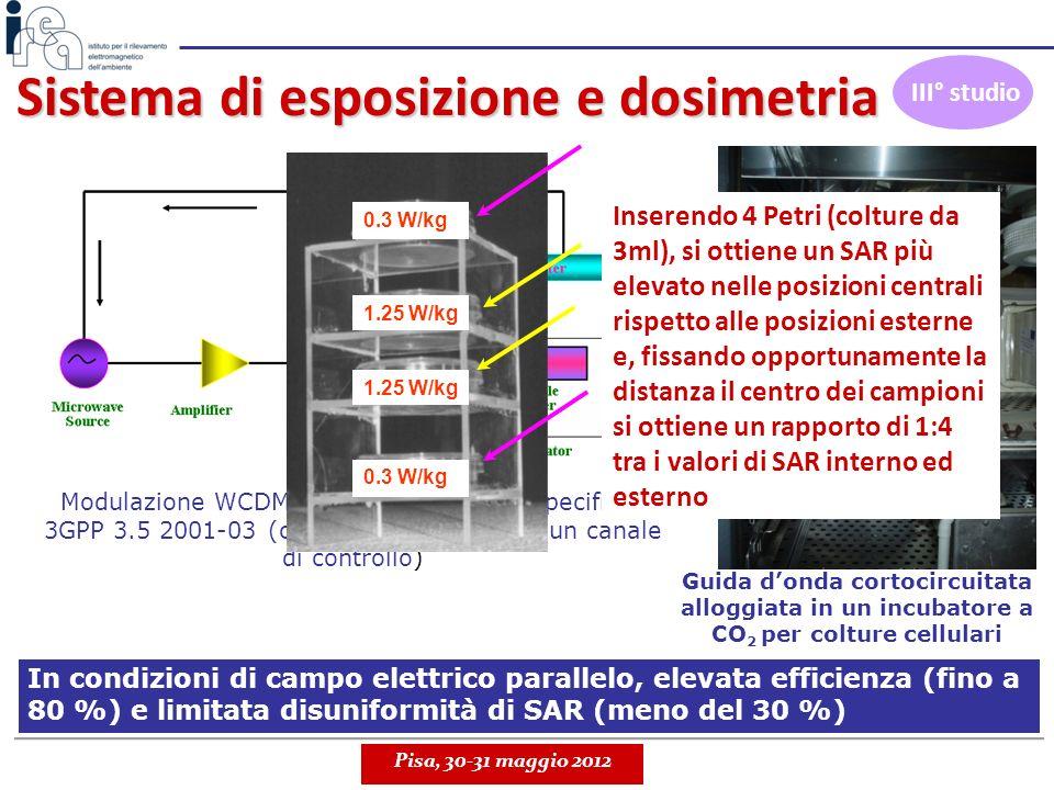 Sistema di esposizione e dosimetria Guida donda cortocircuitata alloggiata in un incubatore a CO 2 per colture cellulari Modulazione WCDMA, in accordo