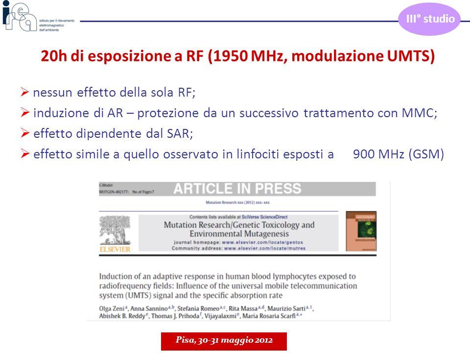 20h di esposizione a RF (1950 MHz, modulazione UMTS) nessun effetto della sola RF; induzione di AR – protezione da un successivo trattamento con MMC;