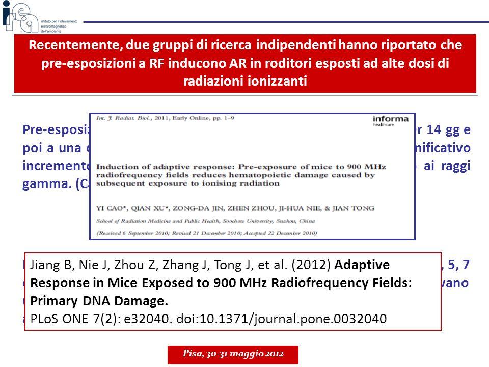 Pre-esposizioni di topi a 900 MHz (GSM), 120 µW/cm 2 1 h/g per 14 gg e poi a una dose letale di raggi gamma (8 Gy) inducevano un significativo increme