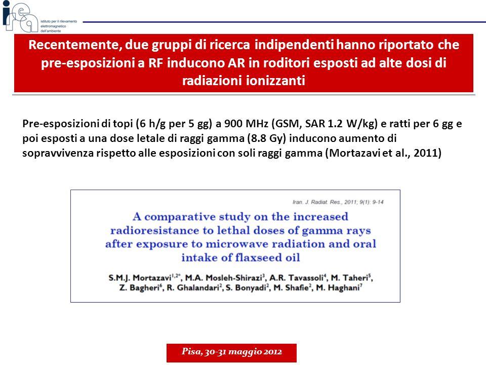 Pre-esposizioni di topi (6 h/g per 5 gg) a 900 MHz (GSM, SAR 1.2 W/kg) e ratti per 6 gg e poi esposti a una dose letale di raggi gamma (8.8 Gy) induco