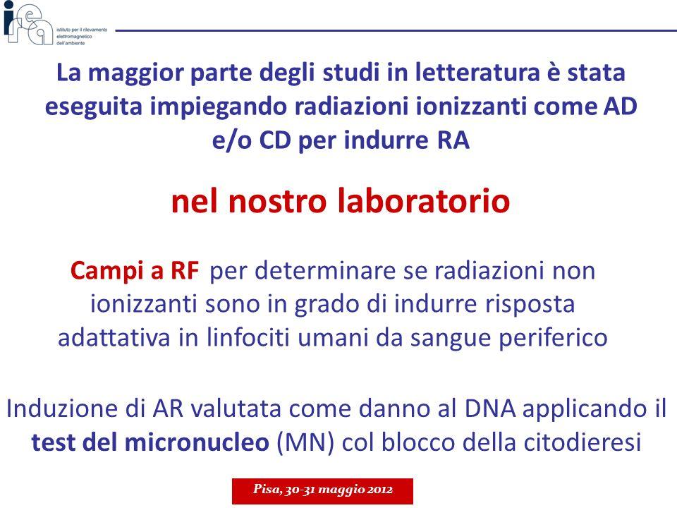 Verificare se la RA indotta da esposizioni a RF è dipendente dal meccanismo di azione con cui lagente utilizzato come challenge induce danno al DNA AD: 20 h RF in fase S; CD: 1 o 1.5 Gy RX a 48 h f = 1950 MHz; UMTS; SAR: 0.3 W/kg AD: 20 h RF in fase S; CD: 1 o 1.5 Gy RX a 48 h f = 1950 MHz; UMTS; SAR: 0.3 W/kg Pisa, 30-31 maggio 2012 IV° studio Scopo MMC - induttore di crosslinks (legami crociati tra le eliche del DNA) Raggi X - induttori di rotture dirette al DNA