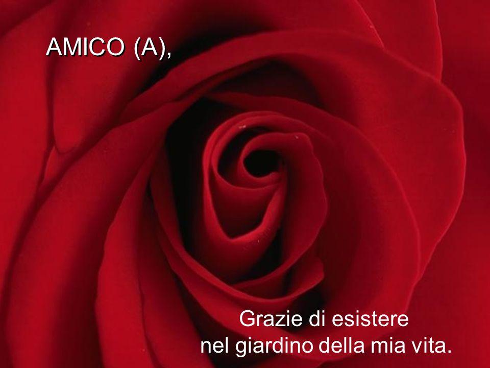 AMICO (A), AMICO (A), Grazie di esistere nel giardino della mia vita.