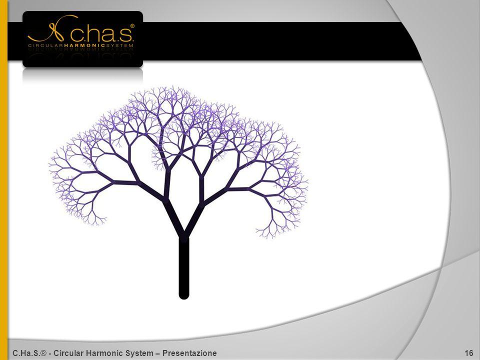 C.Ha.S.® - Circular Harmonic System – Presentazione 16