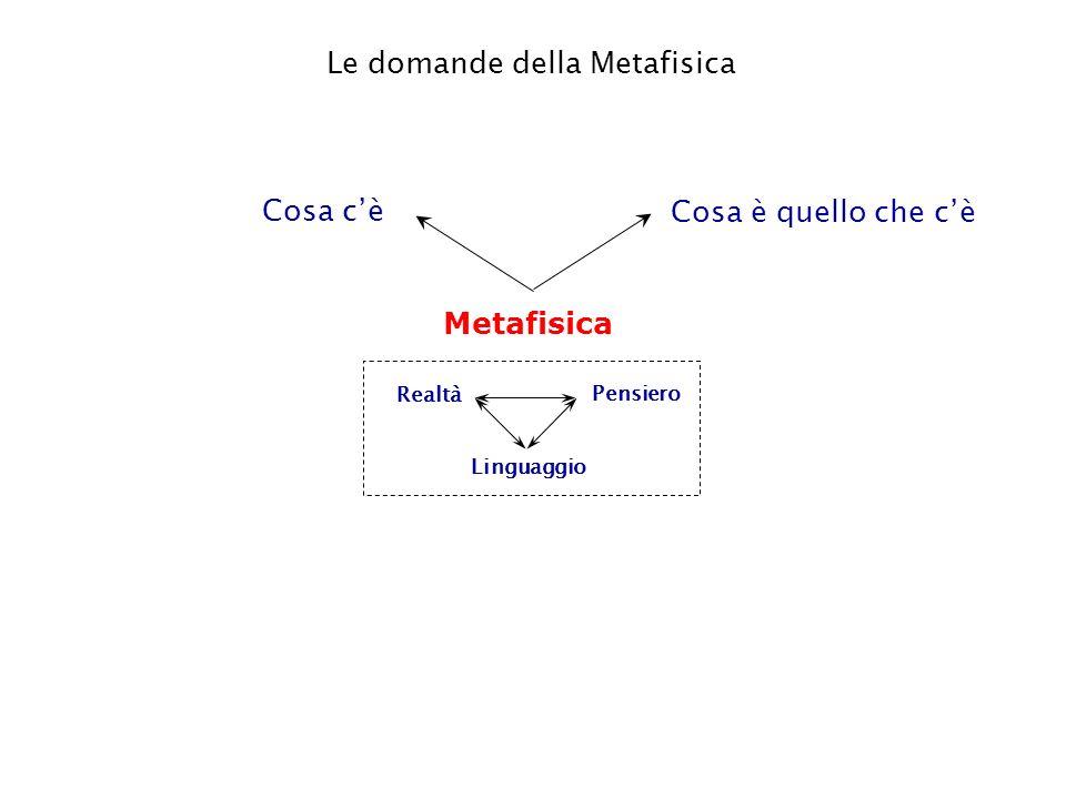 Metafisica Linguaggio Pensiero Realtà Cosa cè Cosa è quello che cè Le domande della Metafisica