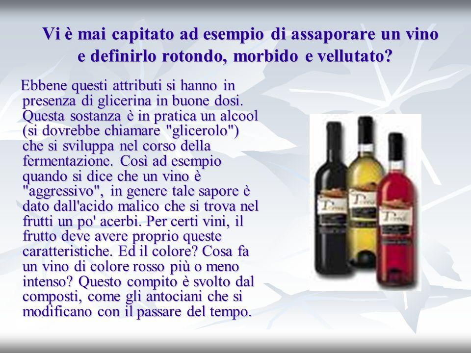 La fermentazione del mosto La fermentazione del mosto d uva sviluppa poi l alcool etilico (etanolo) che, dopo l acqua, è il componente principale di un vino perché presente in una quantità che varia dal 9 al 12%.