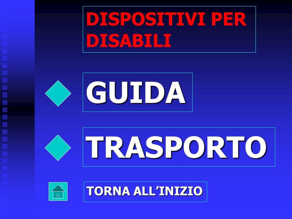 GUIDA TRASPORTO DISPOSITIVI PER DISABILI TORNA ALLINIZIO
