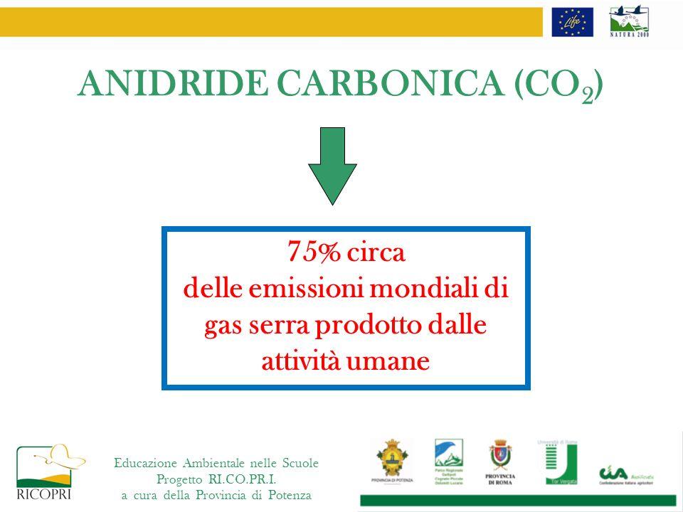 Educazione Ambientale nelle Scuole Progetto RI.CO.PR.I. a cura della Provincia di Potenza ANIDRIDE CARBONICA (CO 2 ) 75% circa delle emissioni mondial