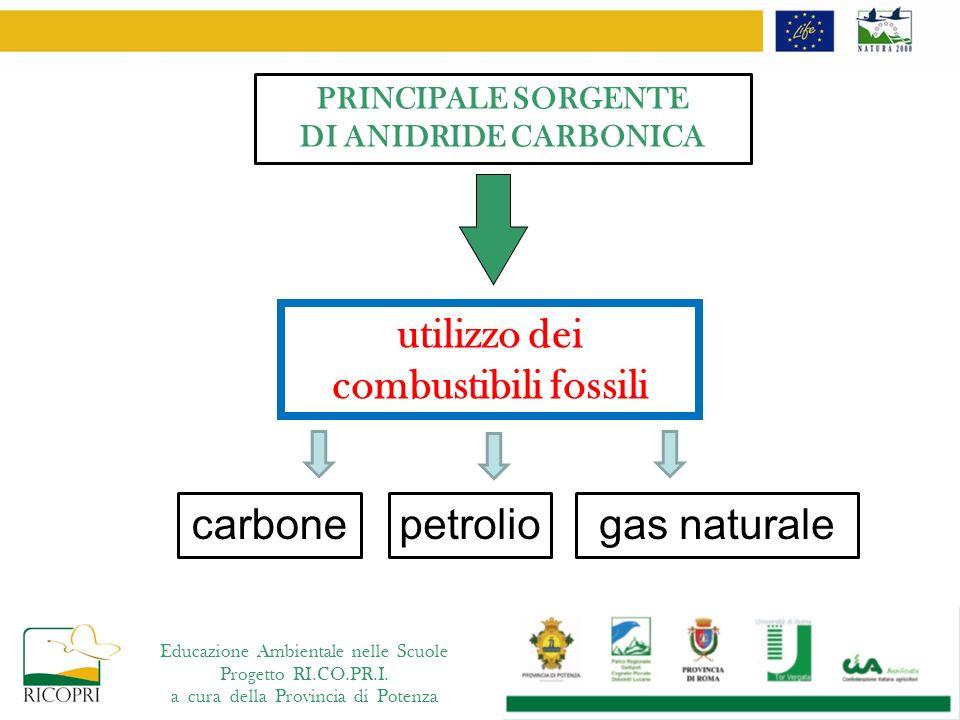 Educazione Ambientale nelle Scuole Progetto RI.CO.PR.I. a cura della Provincia di Potenza utilizzo dei combustibili fossili carbonepetroliogas natural