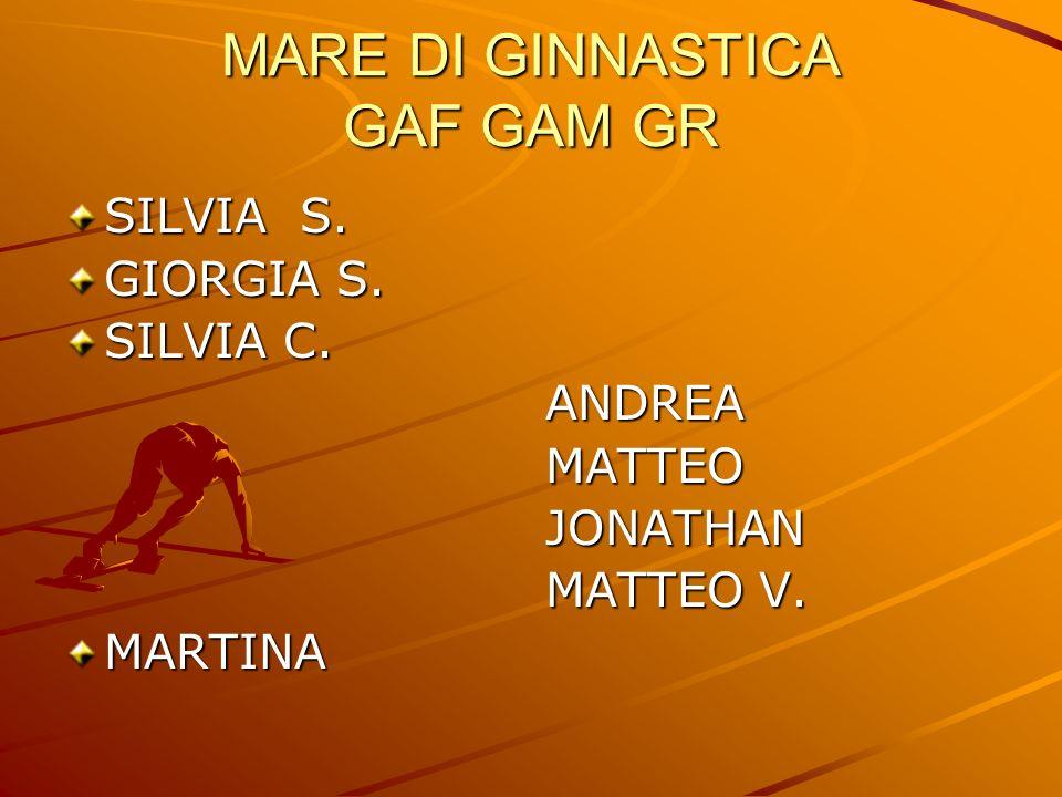 MARE DI GINNASTICA GAF GAM GR SILVIA S. GIORGIA S. SILVIA C. ANDREA ANDREA MATTEO MATTEO JONATHAN JONATHAN MATTEO V. MATTEO V.MARTINA