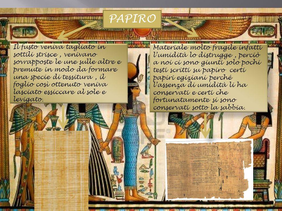 PAPIRO Materiale molto fragile infatti lumidità lo distrugge, perciò a noi ci sono giunti solo pochi testi scritti su papiro certi papiri egiziani per