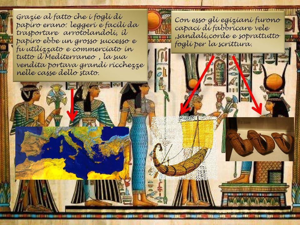 Con esso gli egiziani furono capaci di fabbricare vele,sandali,corde e soprattutto fogli per la scrittura. Grazie al fatto che i fogli di papiro erano