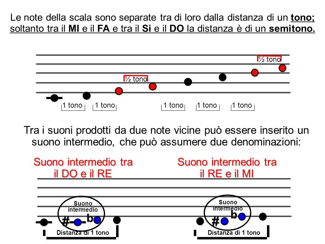 Tra i suoni prodotti da due note vicine può essere inserito un suono intermedio, che può assumere due denominazioni: 1 tono ½ tono Le note della scala