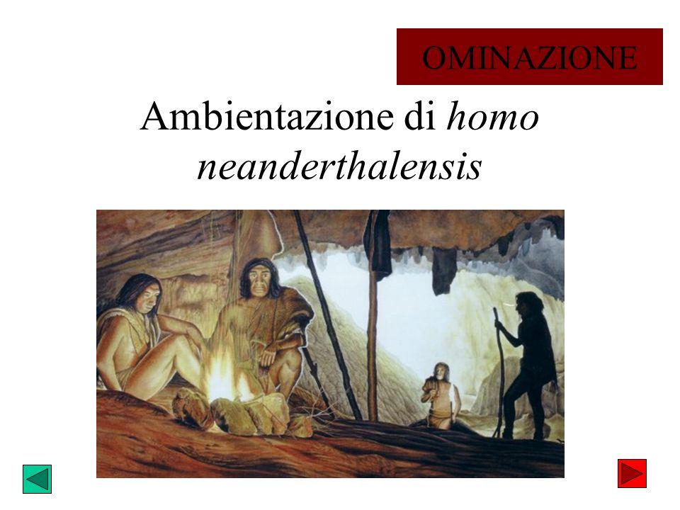 Ambientazione di homo neanderthalensis OMINAZIONE