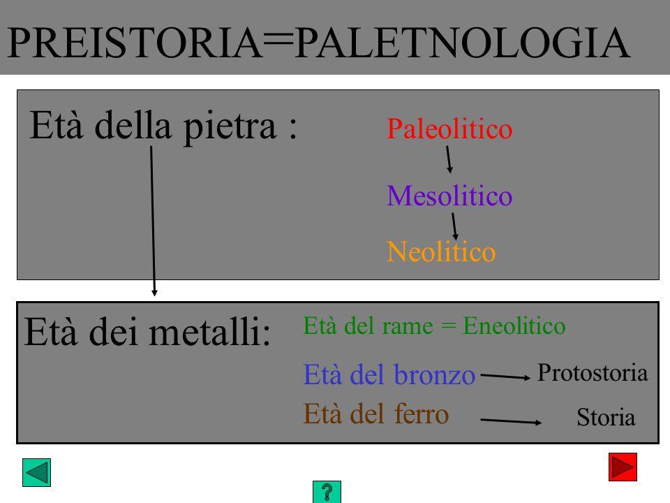 PREISTORIA = PALETNOLOGIA Mesolitico Neolitico Età dei metalli: Paleolitico Età della pietra : Protostoria Storia Età del rame = Eneolitico Età del br