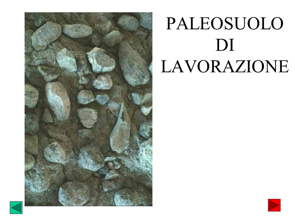 PALEOSUOLO DI LAVORAZIONE