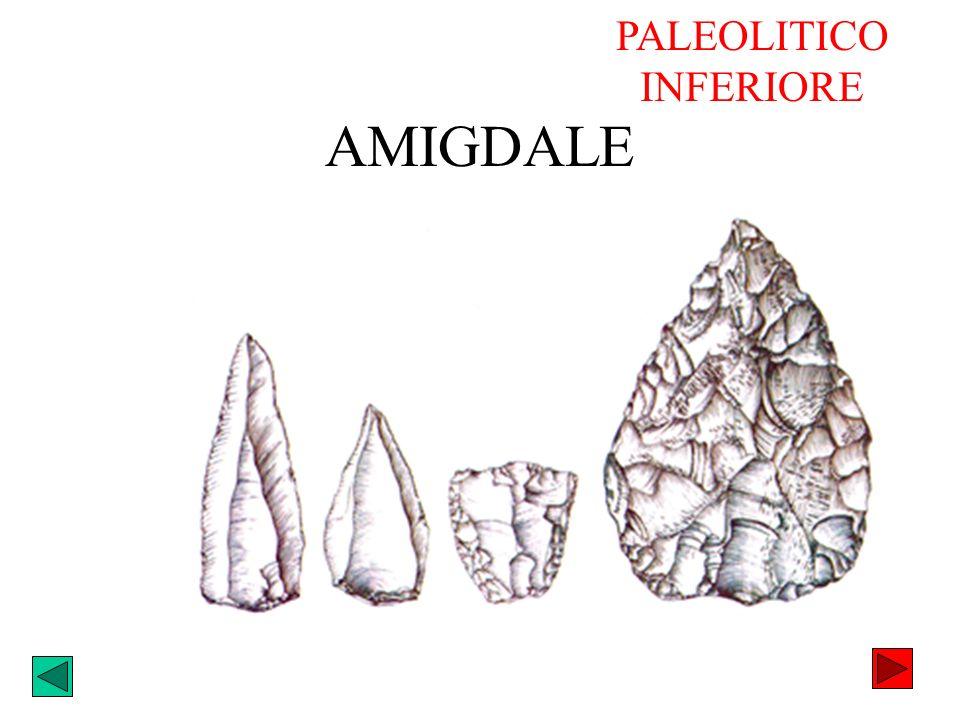 AMIGDALE PALEOLITICO INFERIORE