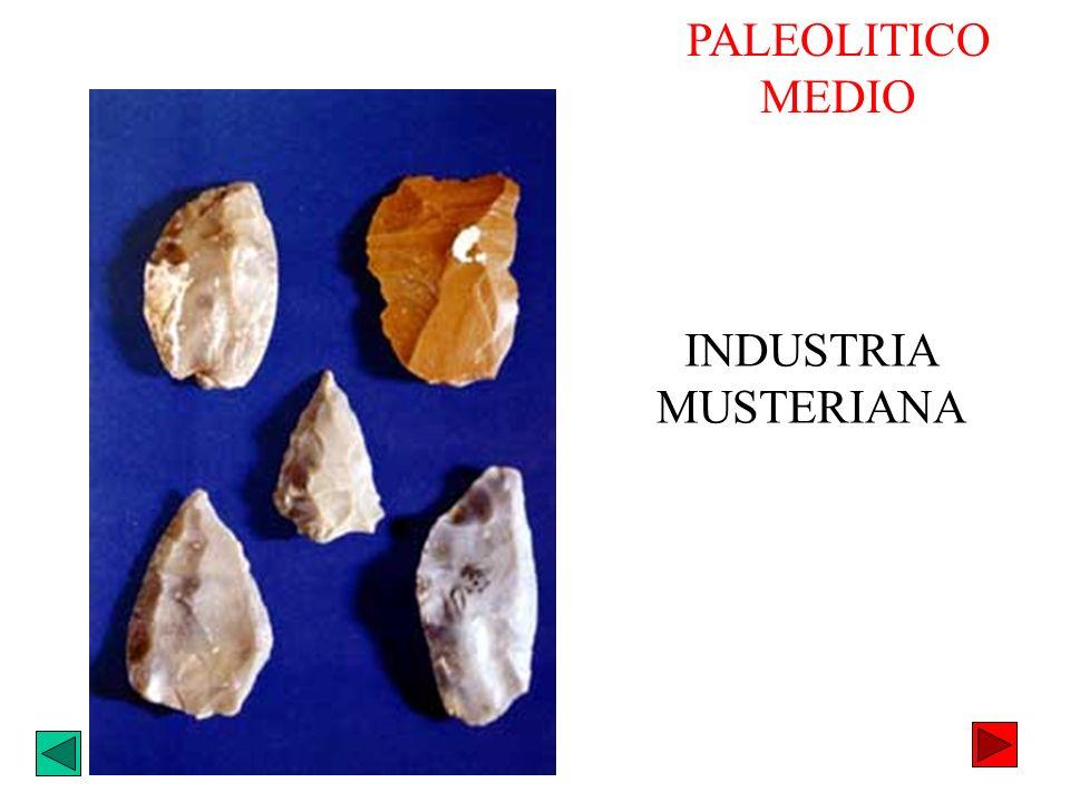 INDUSTRIA MUSTERIANA PALEOLITICO MEDIO