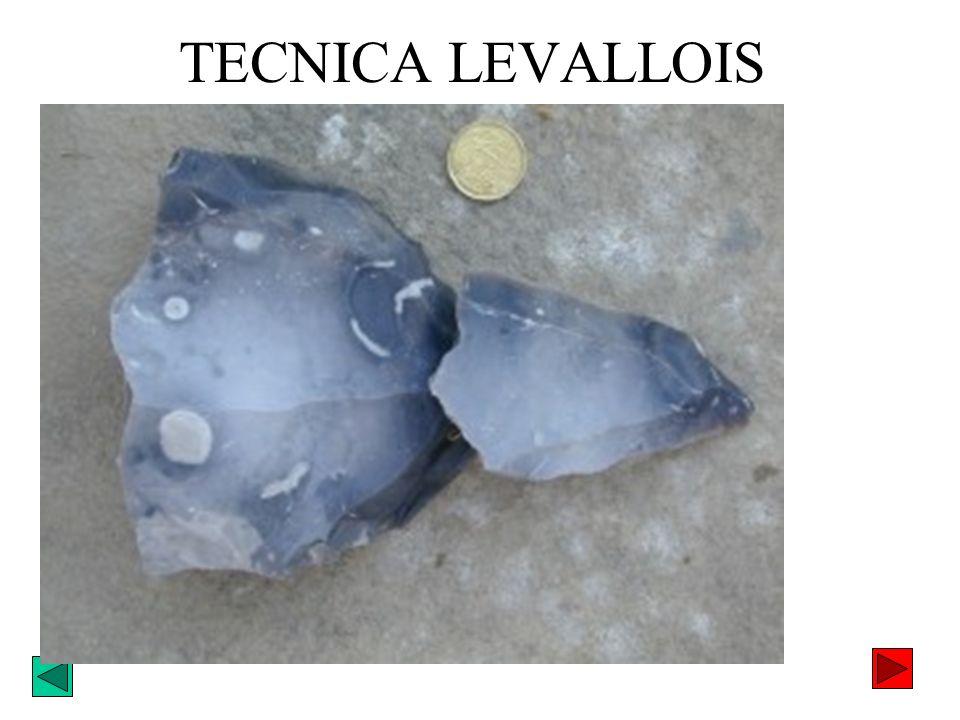 TECNICA LEVALLOIS