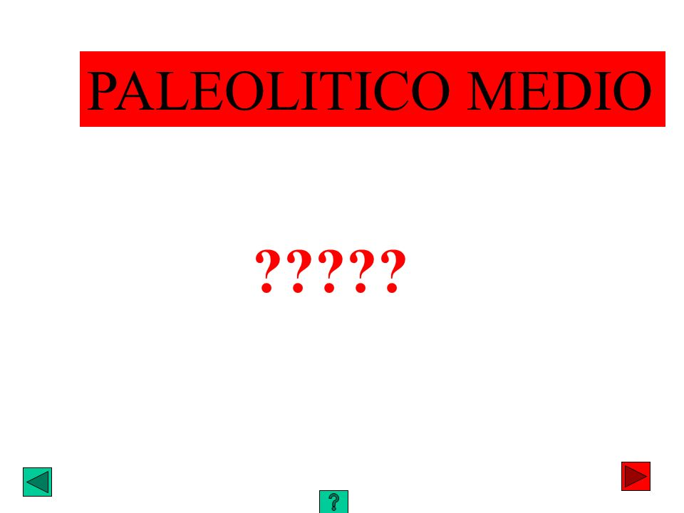 PALEOLITICO MEDIO ?????