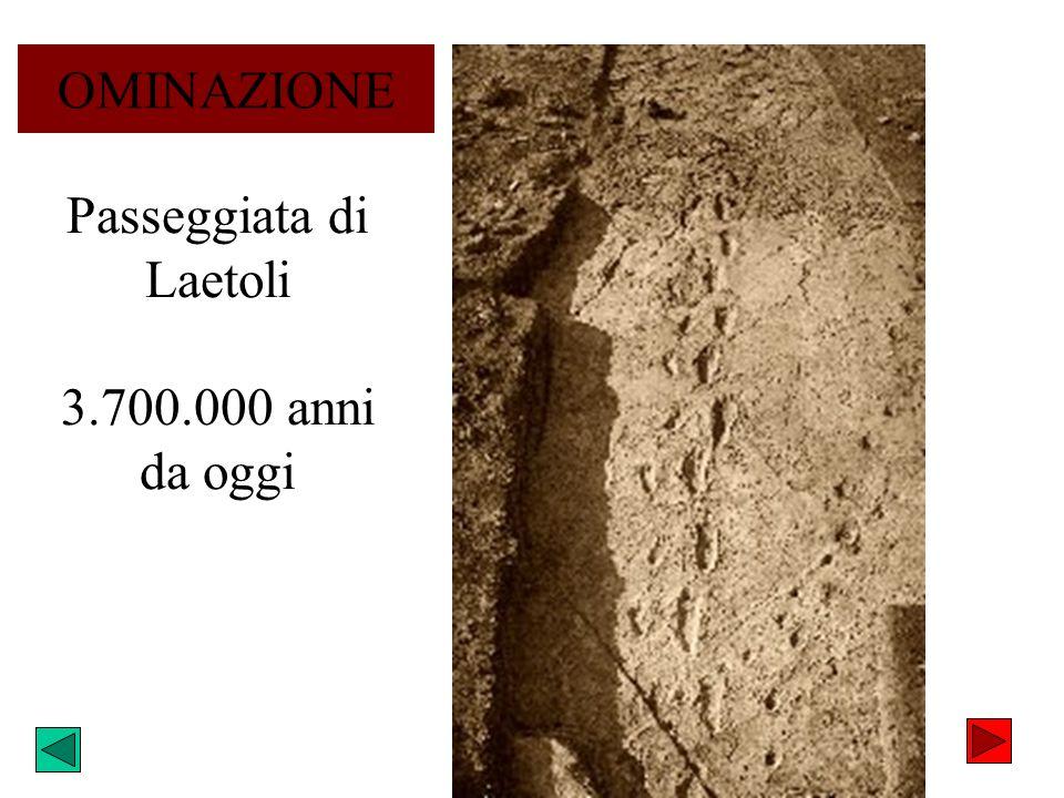 Passeggiata di Laetoli 3.700.000 anni da oggi OMINAZIONE